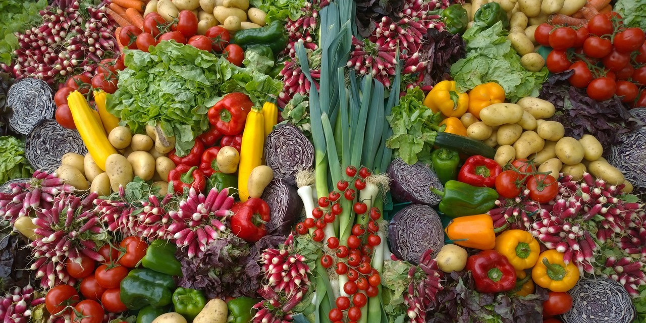 can whole food plant based diet cire uti